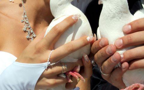 Wybrzeże Amalfi - ślub cywilny we Włoszech - zdjęcie 11
